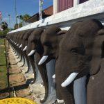 【スリランカ旅行記】Day5 アヌラータプラで灼熱の地面を裸足で歩く現地人。彼らは熱くないのかっ?!