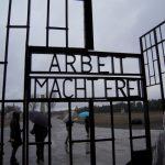 【ドイツ旅行記】Day3 ベルリンのスーパー大調査!