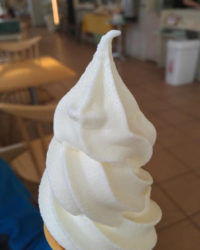 ソフトクリーム in ニセコ.北海道のソフトクリームは、ミルクの味がしっかりとしていて、美味しい。.一口食べて「ん、ミルク」と言ってしまうほど濃厚。.そしてお値段も200円台と、安くはないが、ボッタクってもいない感じがいい。